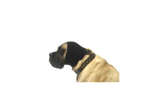 hoodie hond